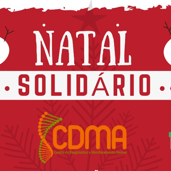 Natal solidário